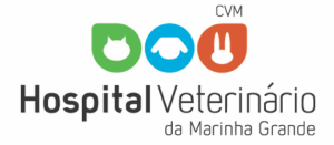 cropped-logo-oficial-_HVMG11.png